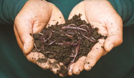 Composteren in eigen tuin