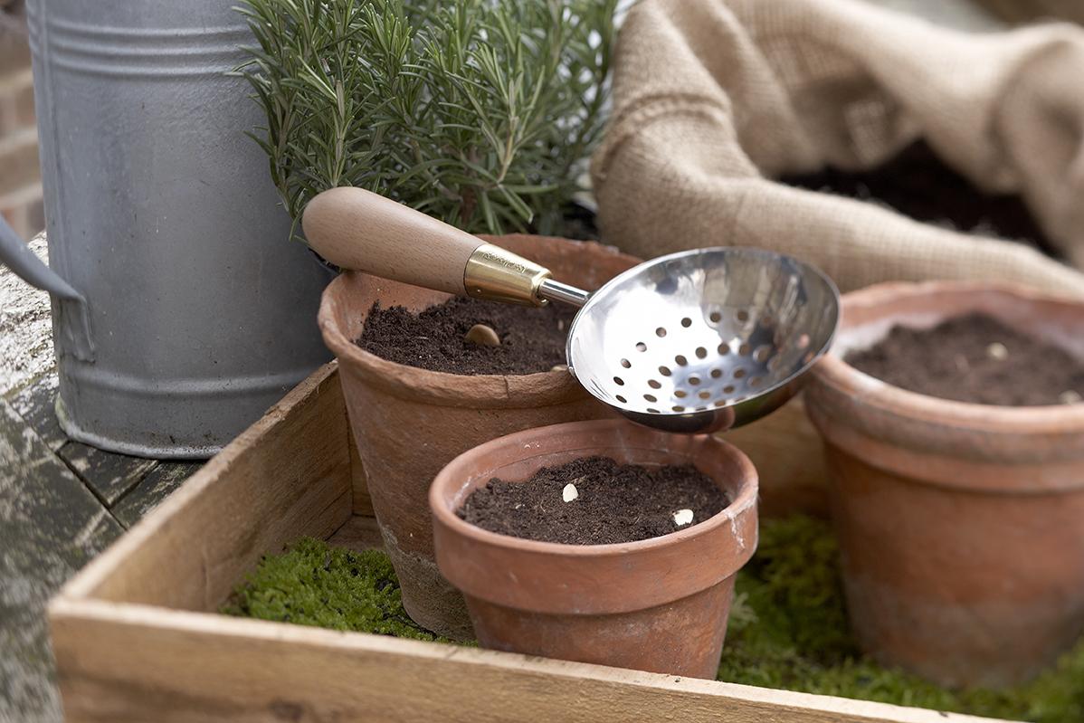Klaar voor het voorjaar - 4 tips voor een groene tuin in de lente!